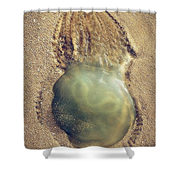 Jellyfish Shower Curtain by Carlos Caetano