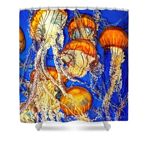 Jellywish Shower Curtain by Jennie Breeze