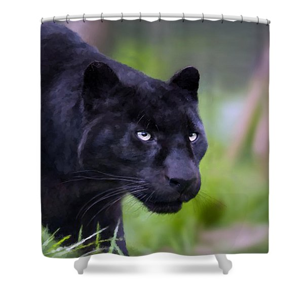 Jet Shower Curtain by Valerie Anne Kelly