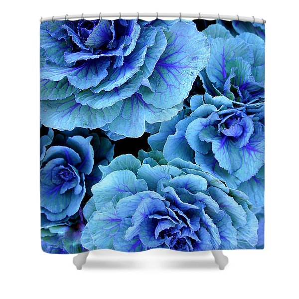 Kale Shower Curtain by Laurie Perry