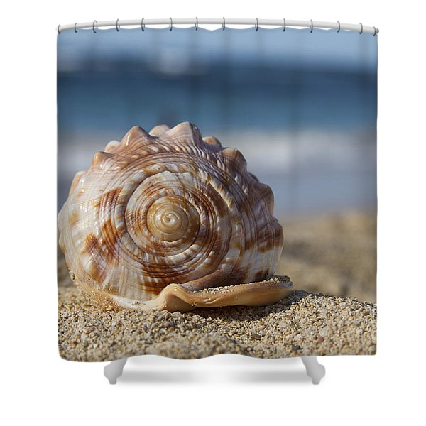 Kapuka'ulua Shower Curtain by Sharon Mau