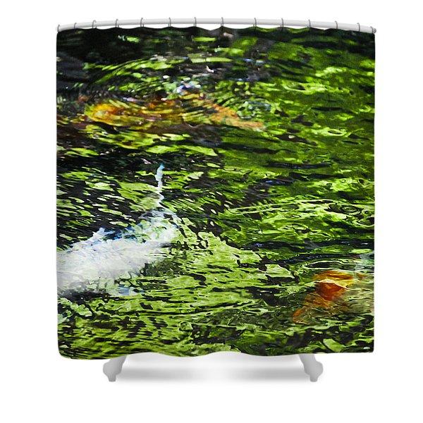 Koi Pond Shower Curtain by Christi Kraft