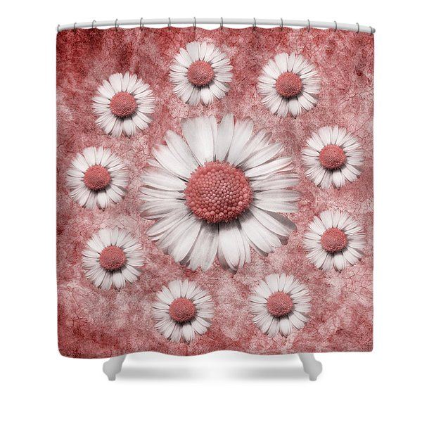 La Ronde Des Marguerites - Pink 02 Shower Curtain by Variance Collections