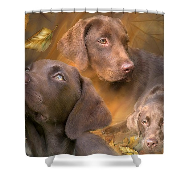 Lab In Autumn Shower Curtain by Carol Cavalaris