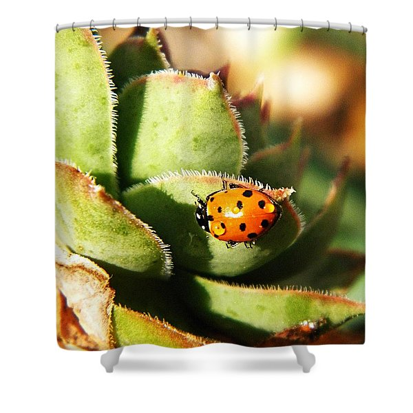 Ladybug And Chick Shower Curtain by Chris Berry