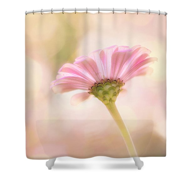 Ladylike Shower Curtain by Amy Tyler