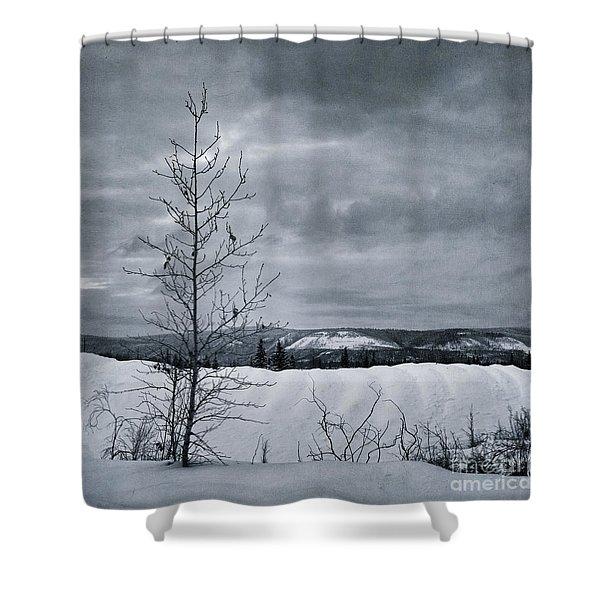 land shapes 15 Shower Curtain by Priska Wettstein