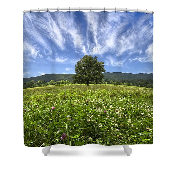 Last Tree Shower Curtain by Debra and Dave Vanderlaan