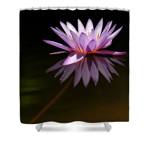 Lavendar Reflections Shower Curtain by Sabrina L Ryan