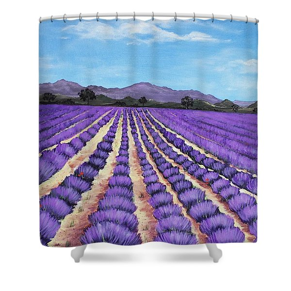 Lavender Field In Provence Shower Curtain by Anastasiya Malakhova