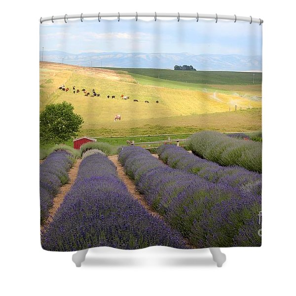 Lavender Valley Shower Curtain by Carol Groenen