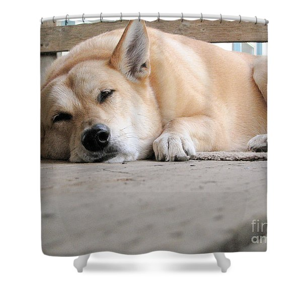 Lazin' On The Porch Shower Curtain by Rory Sagner