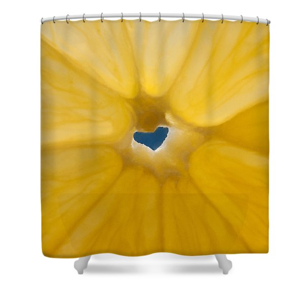 Lemon Sunshine Love Shower Curtain by Roger Reeves  and Terrie Heslop