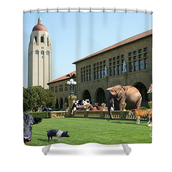 Life Down On The Farm Stanford University California Dsc685 Shower Curtain by Wingsdomain Art and Photography