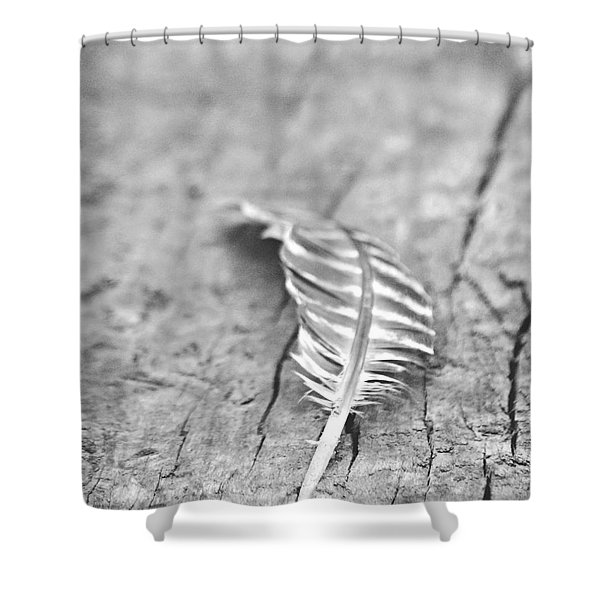 Light as a Feather Shower Curtain by Chastity Hoff