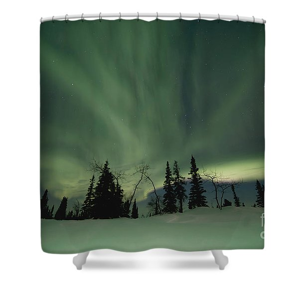 light dancers Shower Curtain by Priska Wettstein
