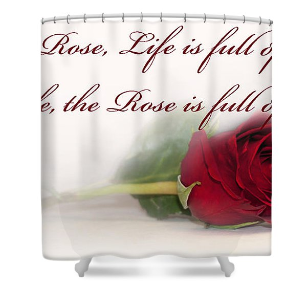 Like the Rose Shower Curtain by Mechala  Matthews
