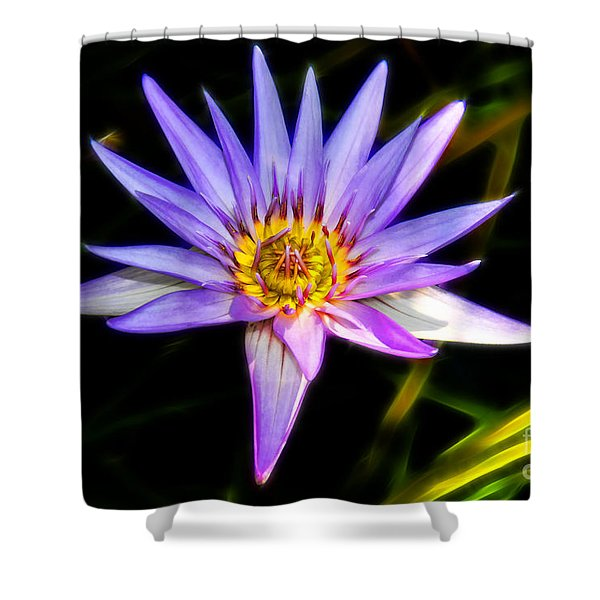 Lilac Lily Shower Curtain by Mariola Bitner