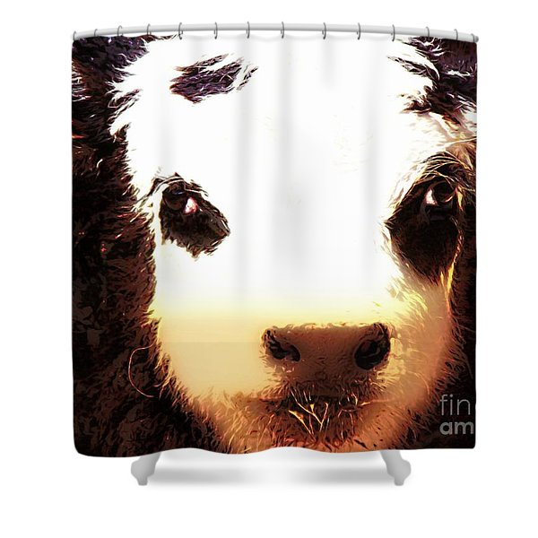 Little Black Baldy Shower Curtain by Barbara Chichester