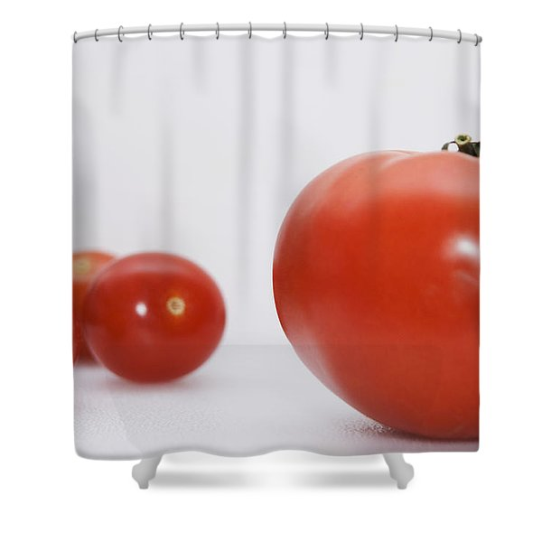 Little Tomatoes And One Big Tomato Shower Curtain by Marlene Ford
