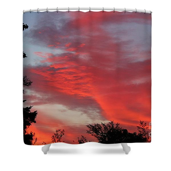 Lobster Sky Shower Curtain by Barbara Griffin