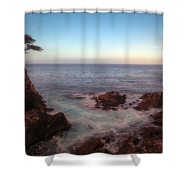 Lone Cyprus Pebble Beach Shower Curtain by Mike Reid