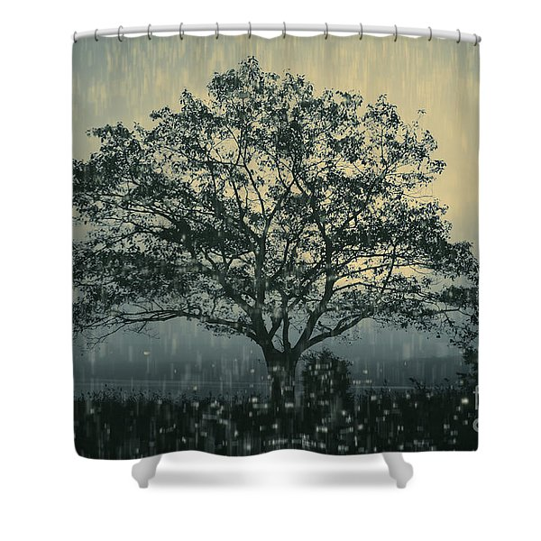 Lone Tree and Stormy Evening Shower Curtain by David Gordon