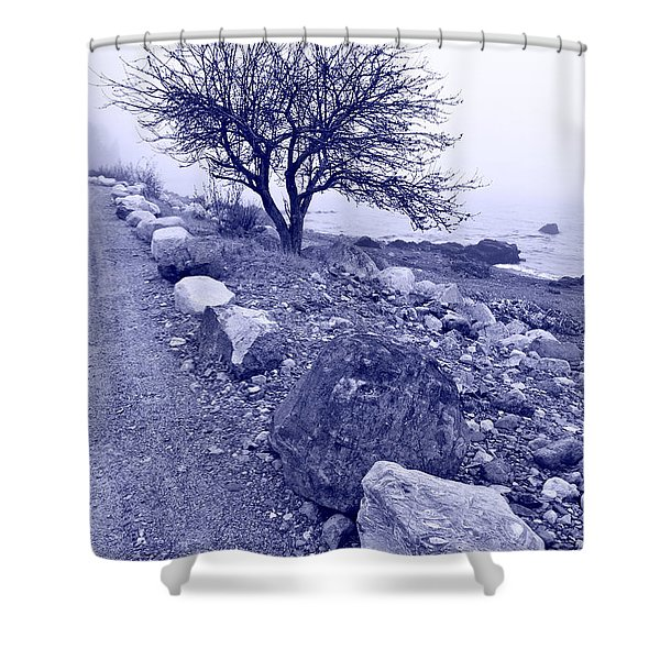 Lonely Road 2 Shower Curtain by Bill Caldwell -        ABeautifulSky Photography