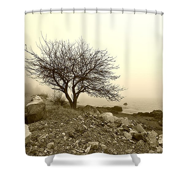 Lonely Road Shower Curtain by Bill Caldwell -        ABeautifulSky Photography