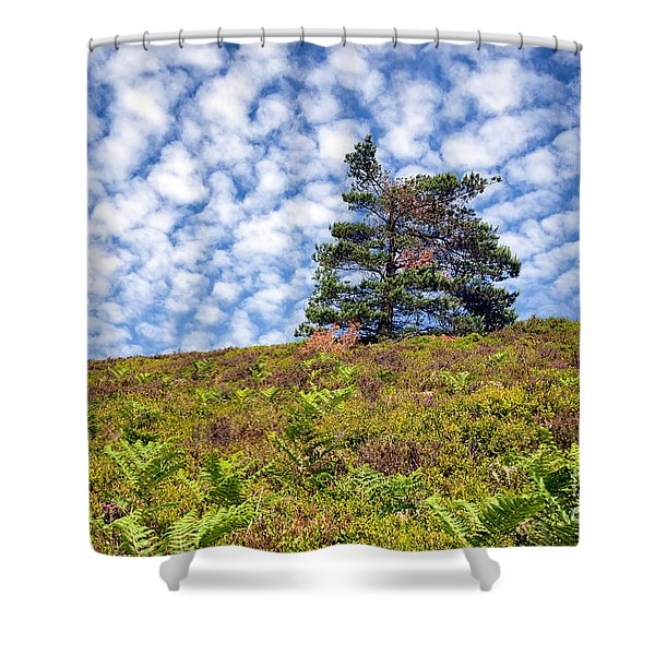 Lonely Tree Shower Curtain by Adrian Evans
