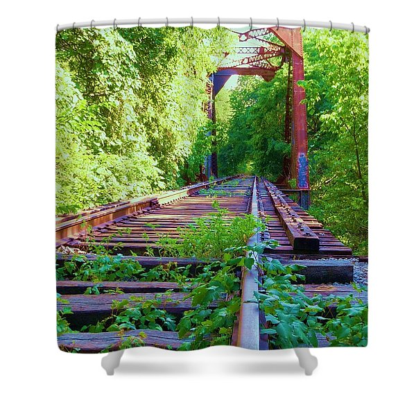 Lonesome Railroad #5 Shower Curtain by Robert ONeil