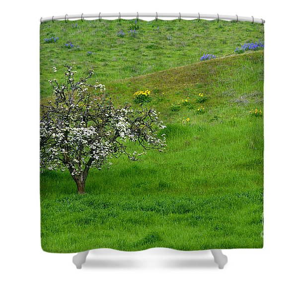 Long Forgotten Shower Curtain by Mike  Dawson