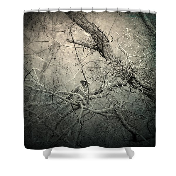 Lontano Shower Curtain by Taylan Soyturk