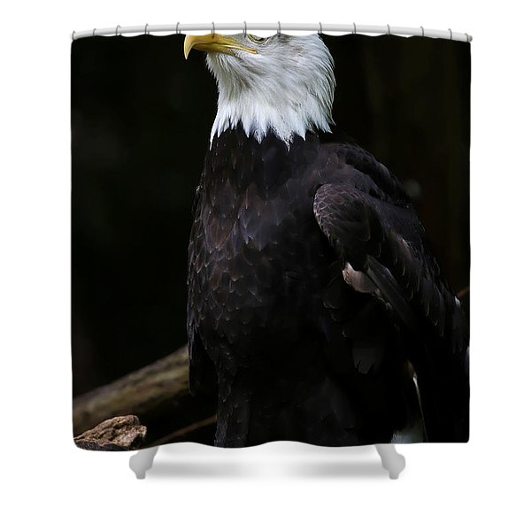 Looking For Strength Shower Curtain by Athena Mckinzie
