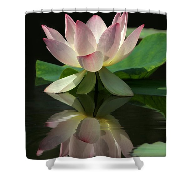 Lovely Lotus Reflection Shower Curtain by Sabrina L Ryan