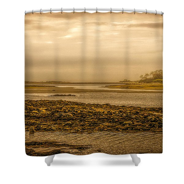 Low Tide Cape Porpoise Maine Shower Curtain by Bob Orsillo