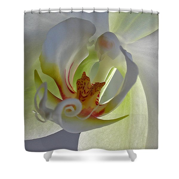 Macro Photograph Of An Orchid Shower Curtain by Juergen Roth