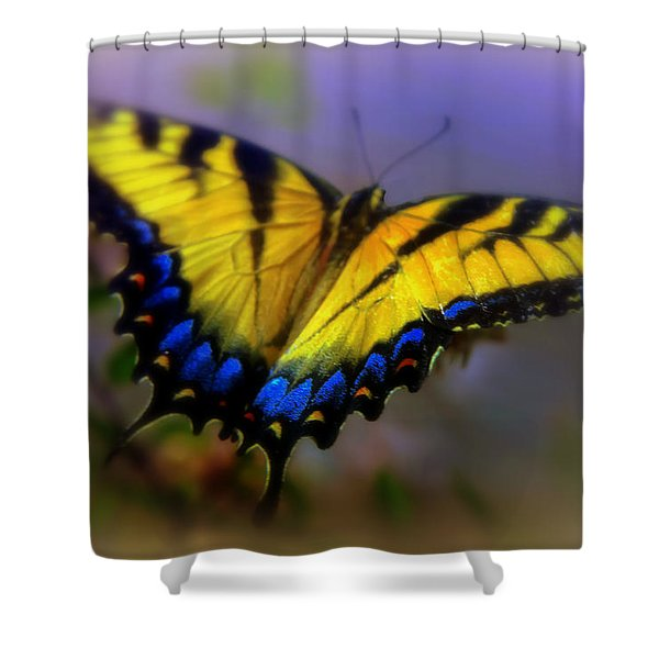 Magic Of Flight Shower Curtain by Karen Wiles