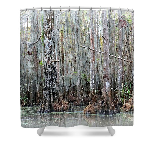 Magical Bayou Shower Curtain by Carol Groenen