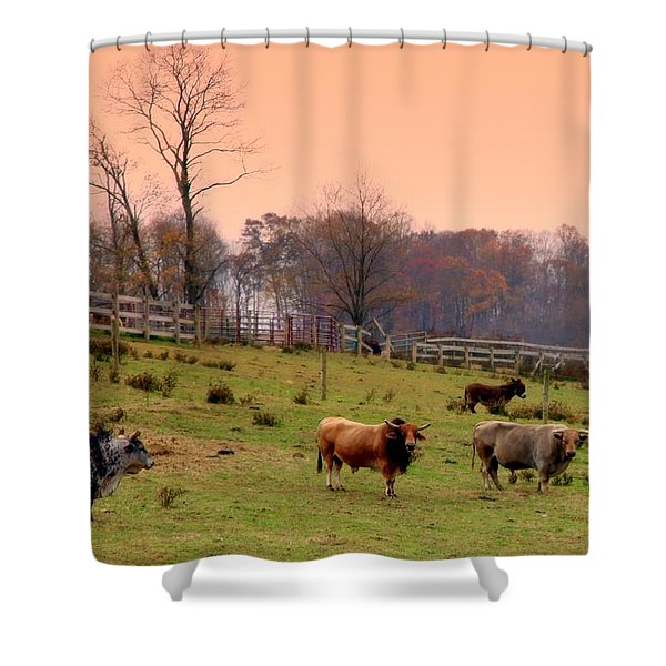 MAGICAL MORNINGS Shower Curtain by KAREN WILES