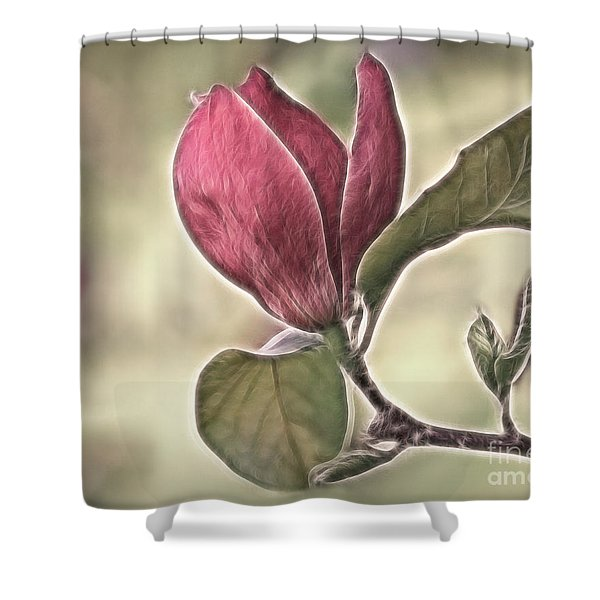 Magnolia Glow Shower Curtain by Susan Candelario