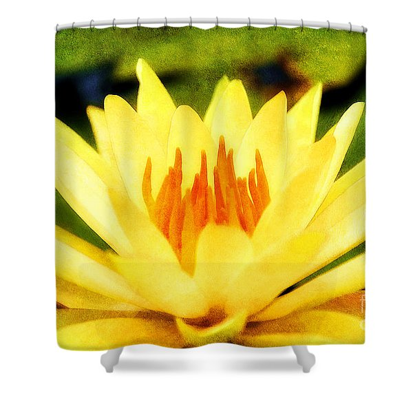 Majestic Shower Curtain by Darren Fisher