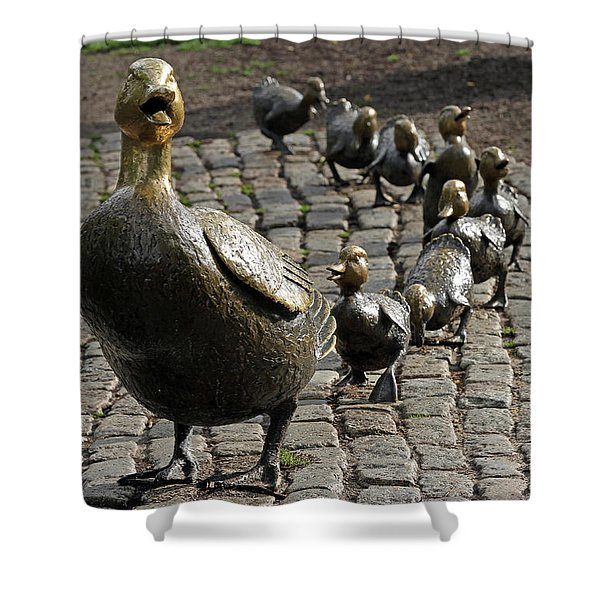 Make Way For Ducklings Shower Curtain by Juergen Roth