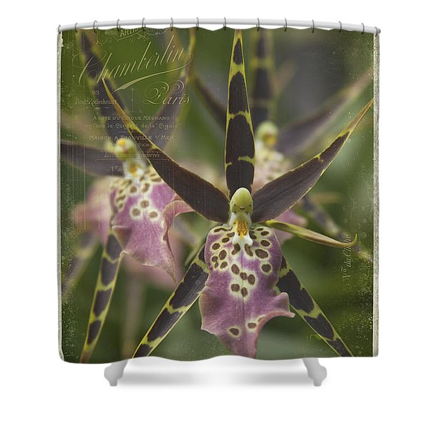 Maliko Dreams Shower Curtain by Sharon Mau