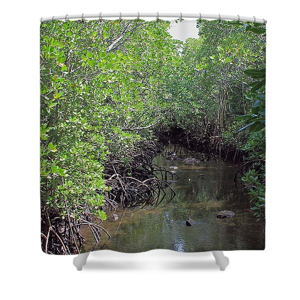 Mangrove Forest Shower Curtain by Tony Murtagh