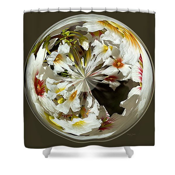 Many Colored Centers Shower Curtain by Phyllis Denton