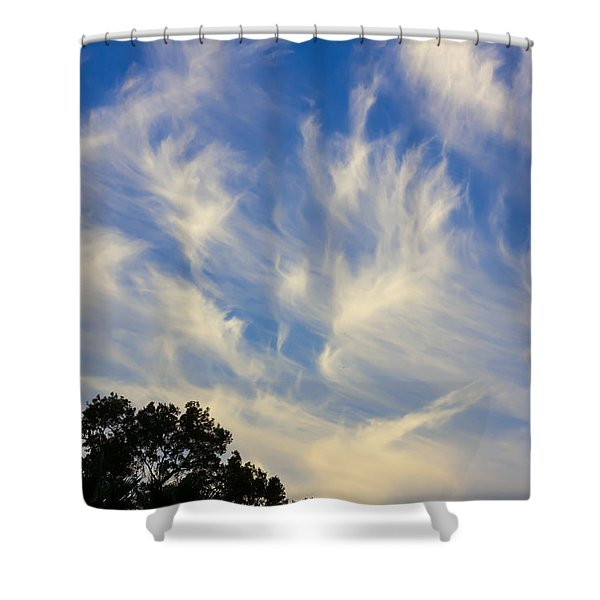 Mare's Tail Shower Curtain by John Bailey
