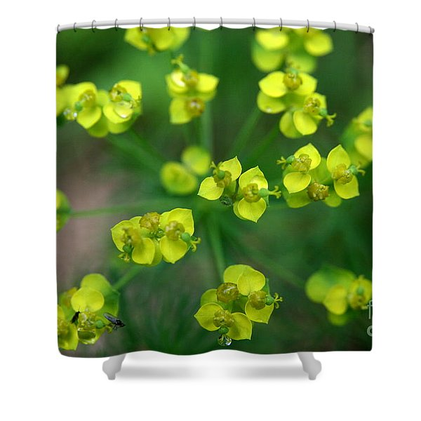 May Explosion Shower Curtain by Neal  Eslinger