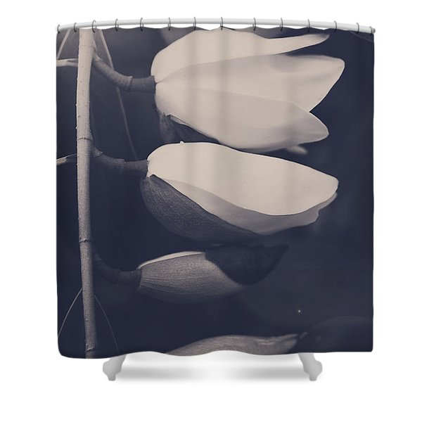 Maybe Someday You'll See Shower Curtain by Laurie Search