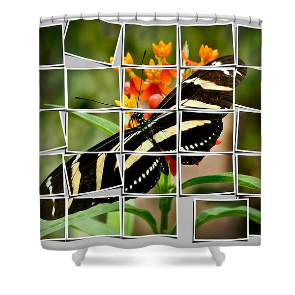 Messed Up Butterfly Shower Curtain by Jean Noren